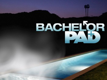 The_Bachelor_Pad_TV_show_by_ABC.350w_263h.jpg