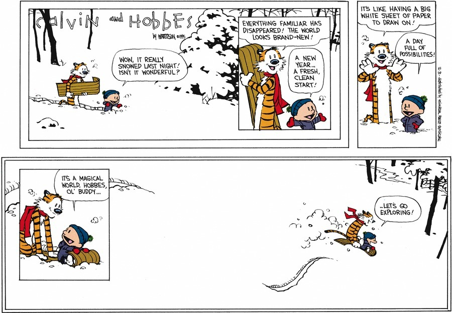 Calvin and Hobbes Comic Strip, December 31, 1995 on GoComics.com
